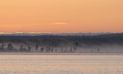 normal_Gawley_s Bay fog
