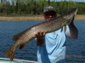 normal_Peffley_s patron with large pike8