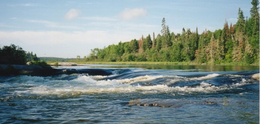 1st rapids